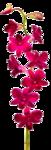 Превью 6f644327ac76 (219x642, 136Kb)