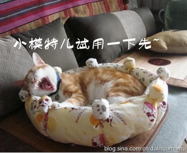 фото мастер-класс домик  для кошки своими руками