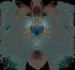 Превью Apophysis-110320-1.133 (640x600, 853Kb)