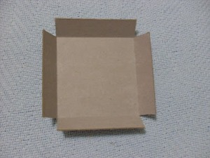 Caixão rukodelnitsy/2719143_SDC19255 (300x225, 19Kb)
