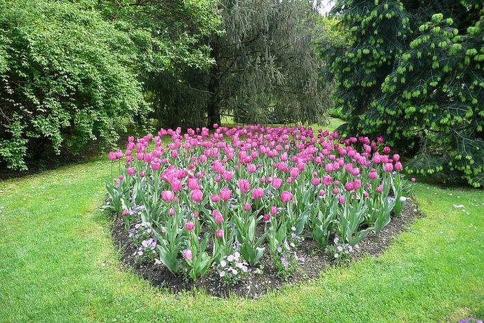 Сады Виллы Таранто 67085