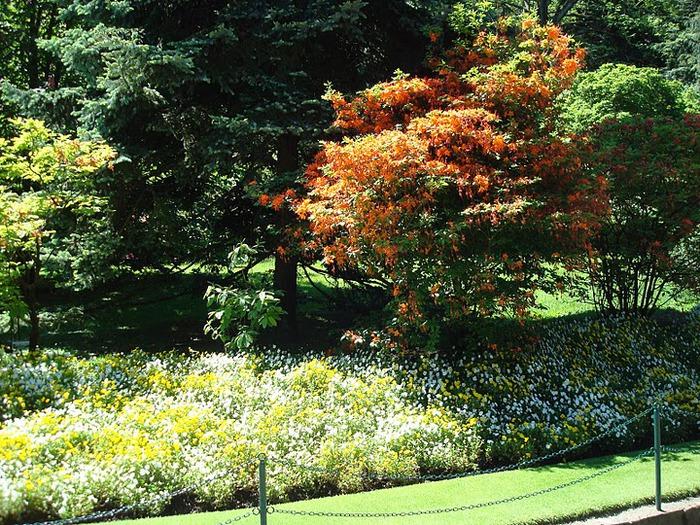 Сады Виллы Таранто 40609