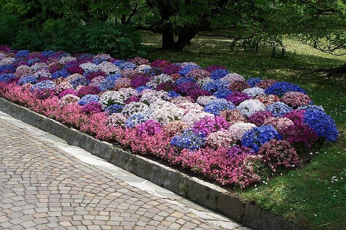 Сады Виллы Таранто 65618