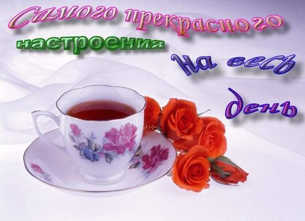 http://img0.liveinternet.ru/images/attach/c/2/73/583/73583856_7f17975e50ee.jpg