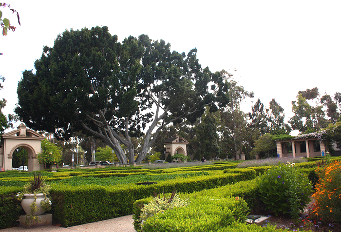 Balboa Park, san Diego  Flickr - Photo Sharing! (700x476, 622Kb)