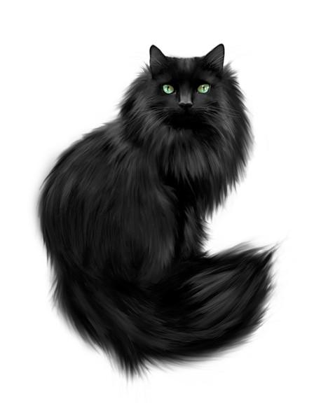 Название: Черный кот 3