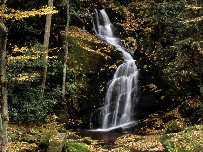 Mouse Creek Falls, Great Smoky Mountains, North  (700x525, 216Kb)