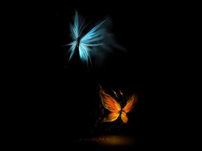 бабочки (700x525, 13Kb)