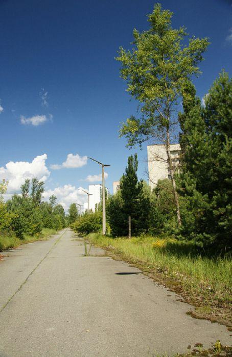 Chernobyl13 (454x700, 59Kb)