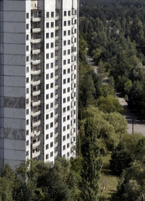 Chernobyl25 (504x700, 78Kb)