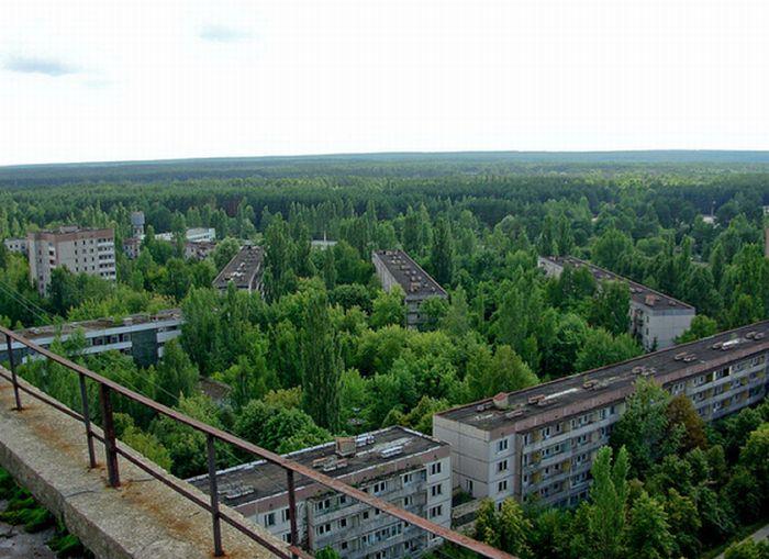 Chernobyl31 (700x509, 71Kb)