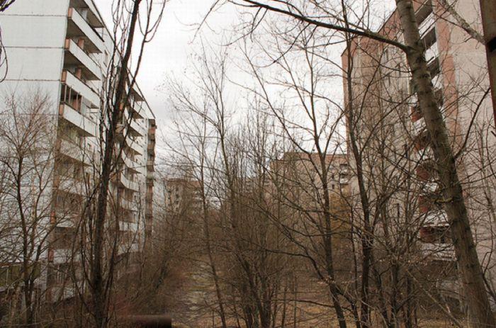 Chernobyl44 (700x463, 90Kb)