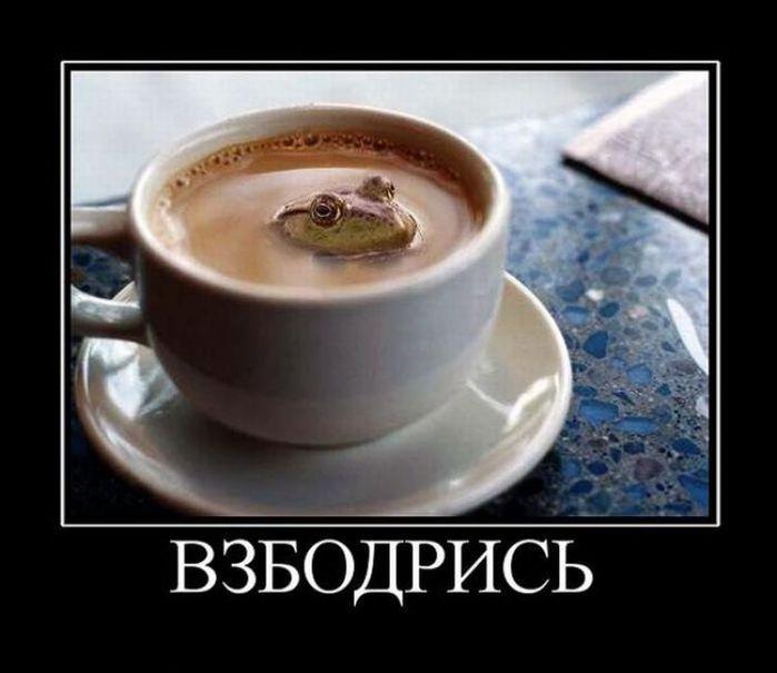 1827016_750x649_q80_t_demotivatory_05 (700x605, 43Kb)