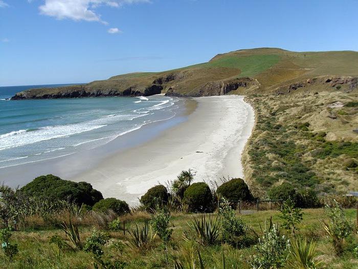 На Новой Зеландии 90614