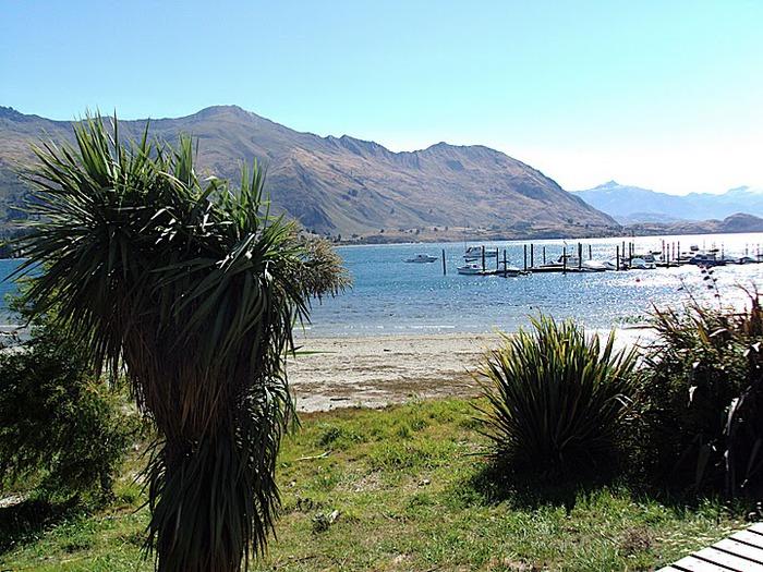 На Новой Зеландии 72809