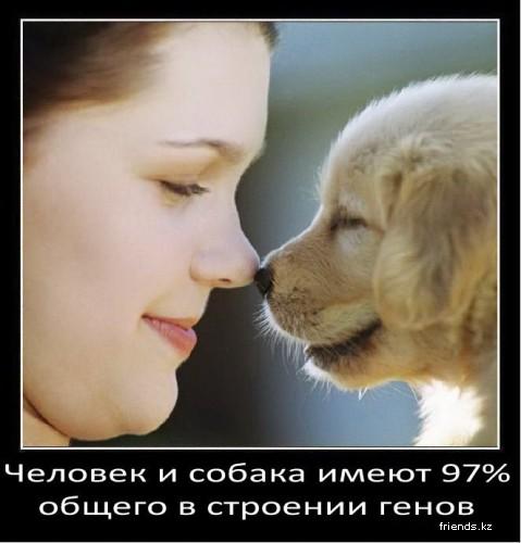 3085196_1301494222_1 (479x500, 47Kb)
