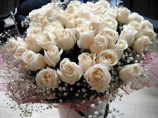фото букеты из белых роз