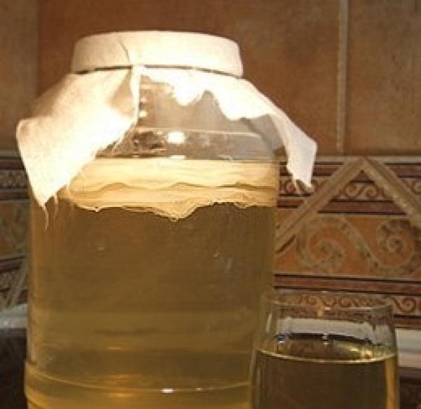 Чем полезен чайный гриб.  Основу чайного гриба составляют колонии...