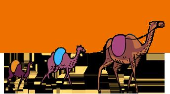 camel (344x190, 47Kb)