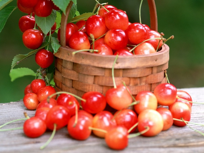 1207718808_1024x768_cherry-basket (700x525, 121Kb)