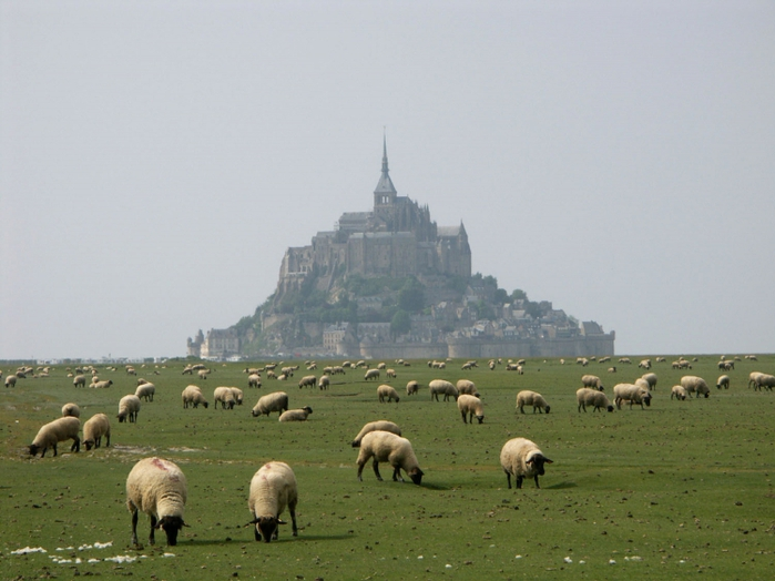 417234MONT SAINT MICHEL (700x524, 222Kb)
