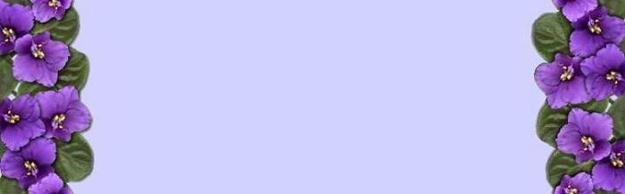 fonbok_fialcvet (700x217, 12Kb)