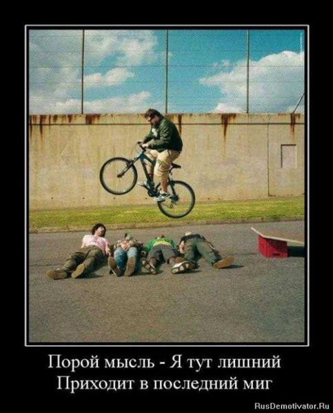 4313737_1285918192_demotivator107 (483x600, 177Kb)
