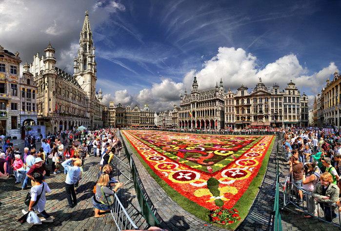 Брюссельская политика, цветы и капуста