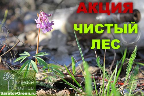 Акция Чистый Лес!/2270477_chistiy_les (500x333, 58Kb)