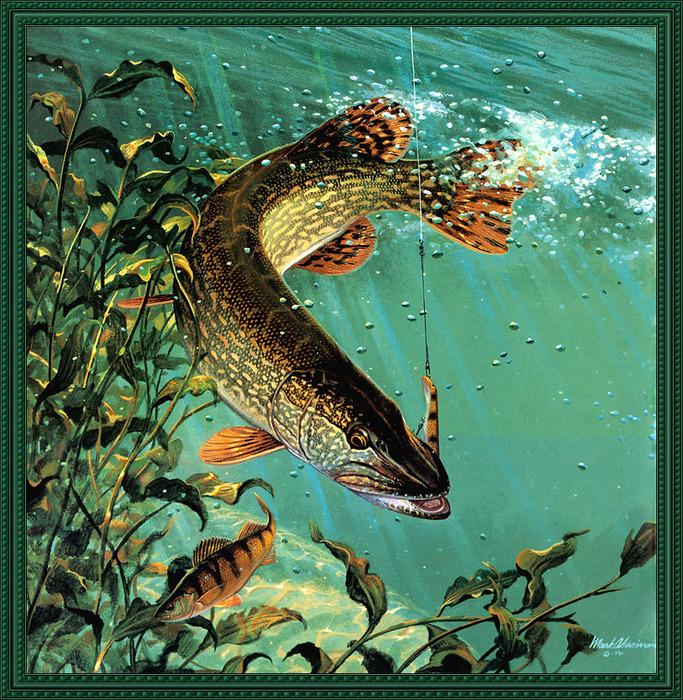 художники рисуют рыбалку