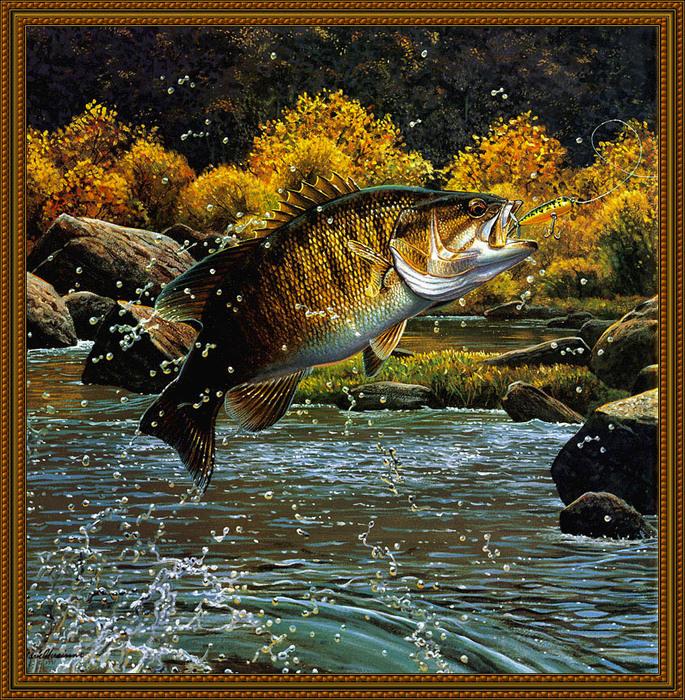 рыбалка и клев рыбы