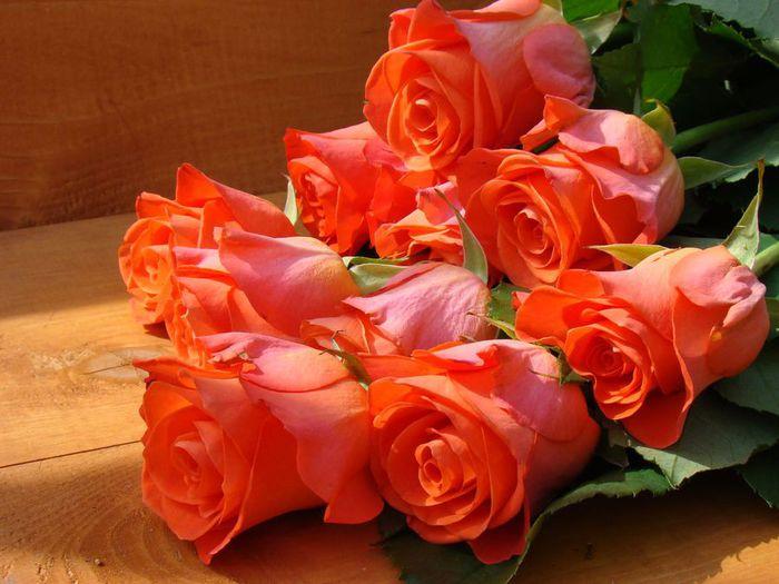 http://img0.liveinternet.ru/images/attach/c/2/73/855/73855430_762312134.jpg
