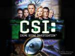 csi (150x113, 5Kb)