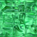 Превью jade_reptile (600x600, 65Kb)