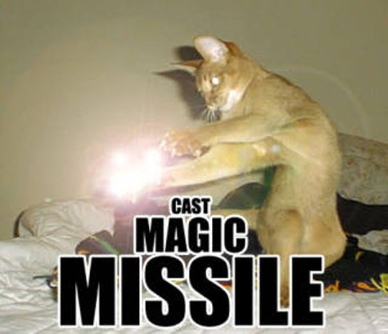 cat_magic_missle (555x477, 33Kb)