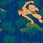 Превью 19793701_11898830_Fon_Tarzan3 (351x351, 25Kb)