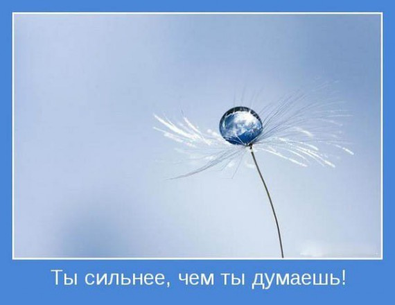 1265925308_1265922294_motivator_03 (570x440, 29Kb)