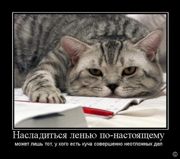 4017627_1284890229_cmex29_ru_659 (700x621, 68Kb)