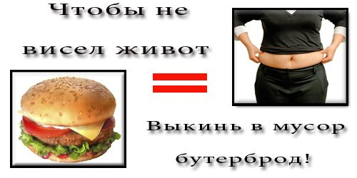 70663718_e6c08d4fbea9 (500x250, 26Kb)