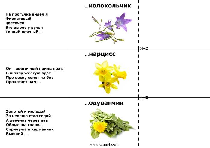 Загадки о цветах для дошкольников