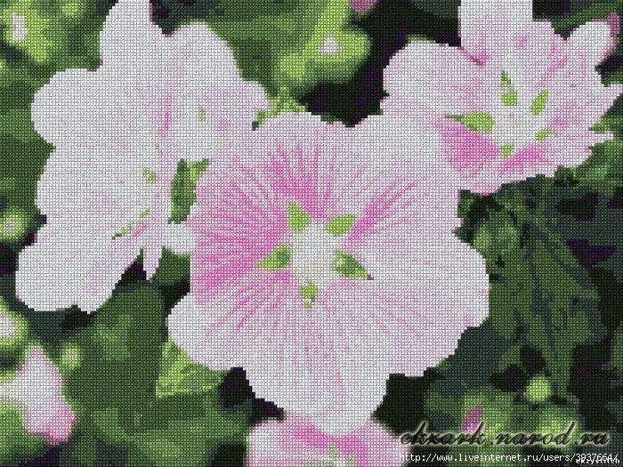 Схема для вышивки крестом - Розовые цветы (200x150, 14 цветов) .