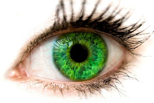 green_eyes-1 (495x330, 52Kb)
