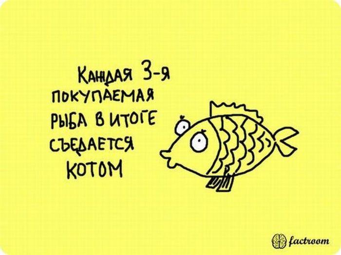 1304581795_fakti_20 (700x525, 38Kb)