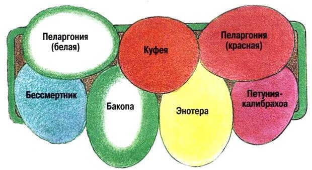 Схемы цветочных композиций для балконных ящиков..., interesnoe. shema11 Украшаем свою жизнь.