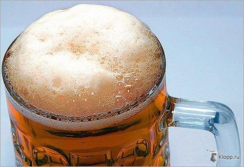 пиво (500x342, 44Kb)