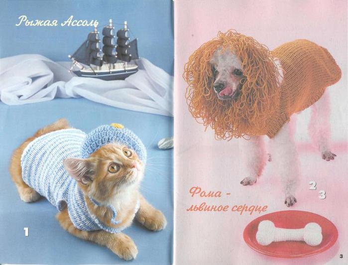 Одежда для кошек и собак 2010-10_2 (700x532, 50Kb)