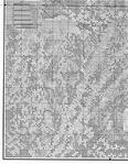 Превью 20 (545x700, 481Kb)