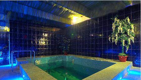 sauna-ostankino-bolshoy-zal-8_ea7db (452x257, 38Kb)