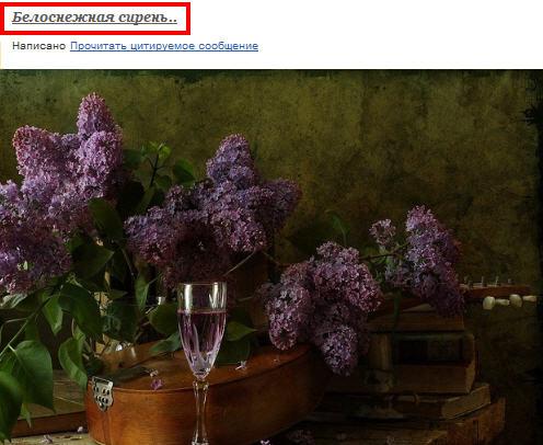 2447247_belosnejnaya_siren (496x406, 43Kb)