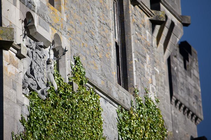 Замок Эшфорд (Ashford Castle) 33373